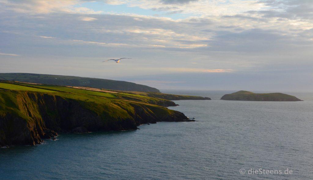 Küste in der Nähe von Cardigan